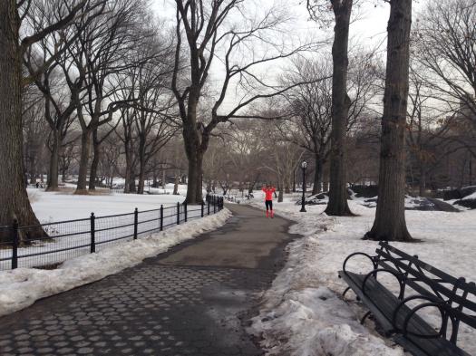 mars new york central park